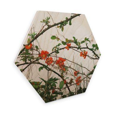 Hexagon Hout Berkenfineer Kadam - Flora Bloesem