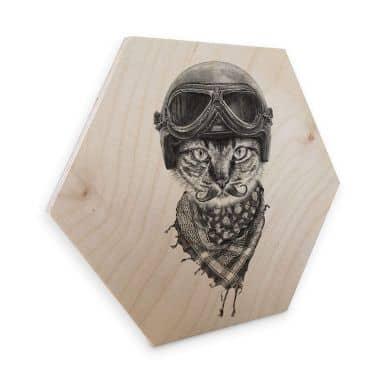 Hexagon - Holz Birke-Furnier Kools - Biker Cat