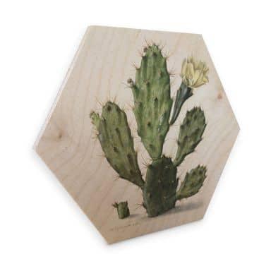 Hexagon Hout Saftleven - Cactus