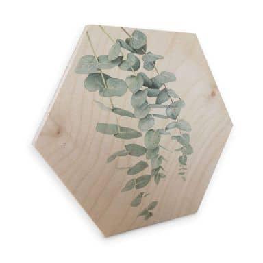 Hexagon - Hout Berkenfineer - Sisi & Seb - Eucalyptus