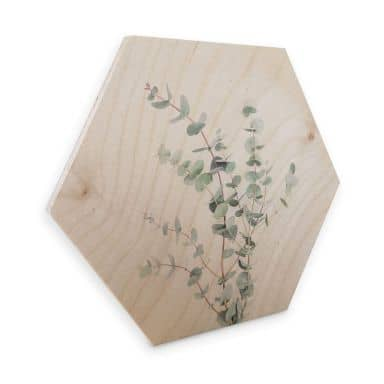 Hexagon Hout Sisi & Seb - Eucalyptustak