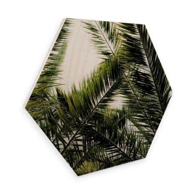 Hexagon hout - Palmen