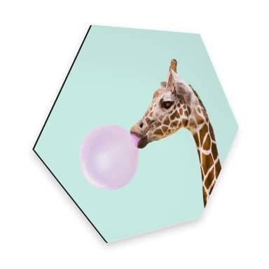 Hexagon Alu-Dibond Fuentes - Giraf met Kauwgom