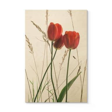 Holzbild Kadam - Flora Tulpe