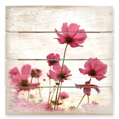 Pink Cosmos 2 - Wood Print