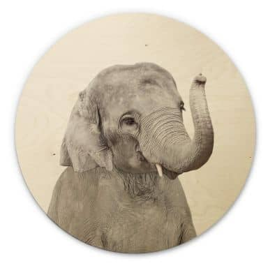 Wandcirkel Hout Sisi & Seb - Baby Elephant