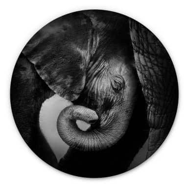 Holzbild - Das Elefantenbaby - Rund