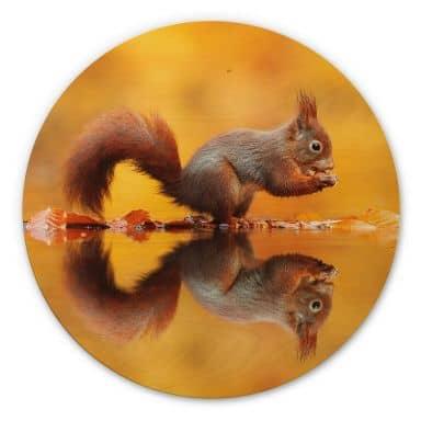 Holzbild van Duijn - Eichhörnchen mit Nuss - Rund