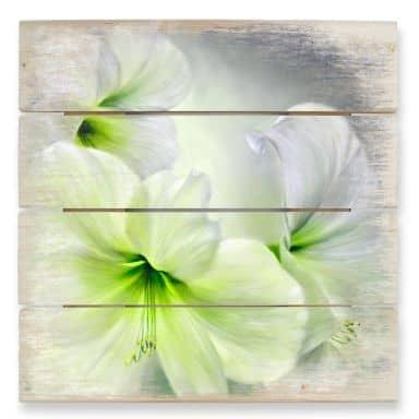 Holzbild Schmucker - Weiße Amaryllis