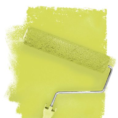 Wall paint FANTASY Living Room Colour Saguaro 1E matt/ silk sheen