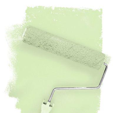 Wall paint FANTASY Living Room Colour Donegal 2B matt/ silk sheen