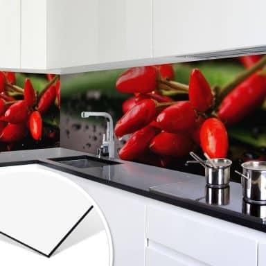 Küchenrückwand - Alu-Dibond - Exotische Schärfe