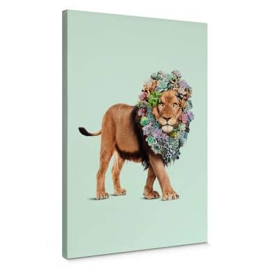 Leinwandbild Loose - Succulent Lion