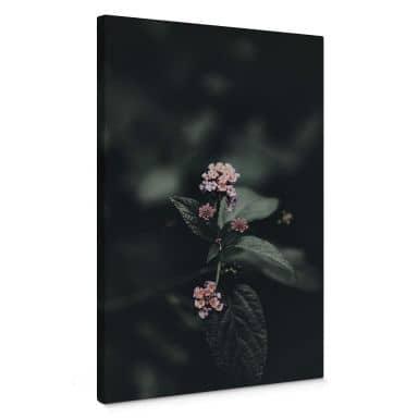 Leinwandbild Zarte rosa Blüte