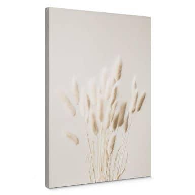 Canvas 1X Studio - Dried Grass