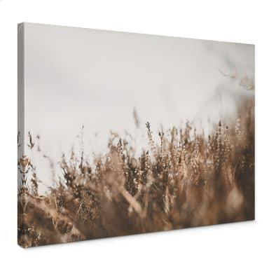 Canvas Annie - Meadow Grass