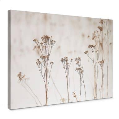 Canvas High Grass