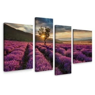 Canvas Print Lavender in the Provence (4 parts)