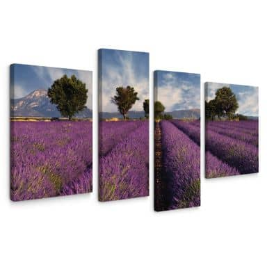 Field of Lavender Canvas print (4 parts)