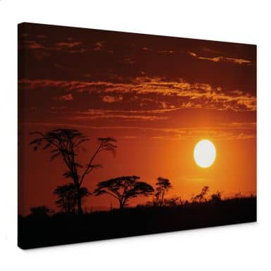 Africa Canvas print panorama