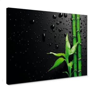 Leinwandbild Bamboo Over Black