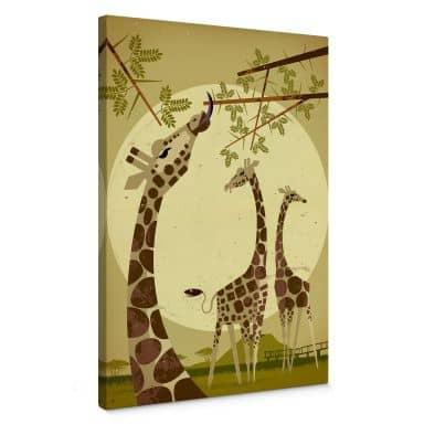 Tableau sur toile Braun - Girafes