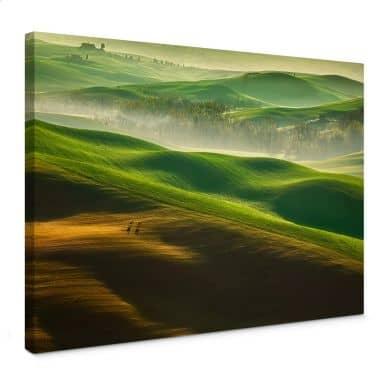 Leinwandbild Browko - Grüne Wiesen
