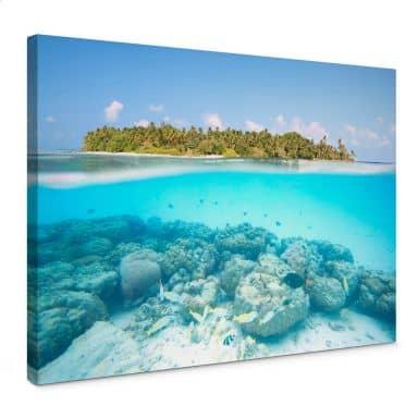 Leinwandbild Colombo - Unterwasserwelt der Malediven