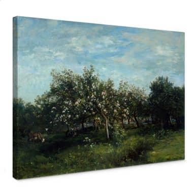 Tableau sur toile Daubigny - Fleurs de pommier
