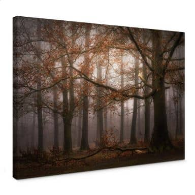 Leinwandbild Dingemans - Nebel im Herbstwald