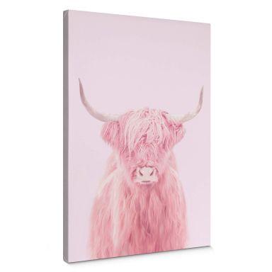 Stampa su tela Fuentes - Highland Cow
