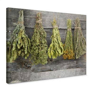 Dried Herbs Canvas print