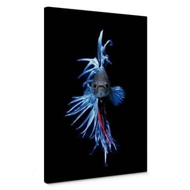 Glowfish Canvas print