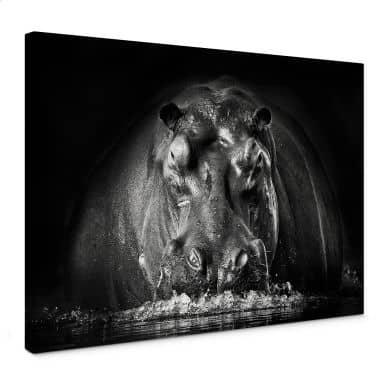 Leinwandbild Golob - Prustendes Nilpferd