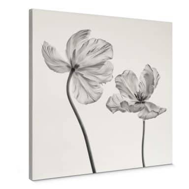 Leinwandbild Grønkjær - Tulpenblüte