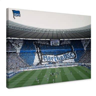 Leinwandbild Hertha BSC - Spielstart im Stadion