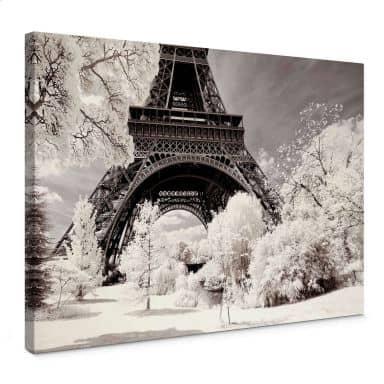 Canvas print Hugonnard - Winter feeling in Paris