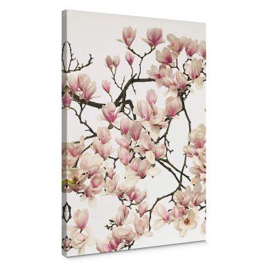 Leinwandbild Kadam - Flora Magnolia