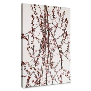 Canvas Print Kadam - Flora Almond Tree
