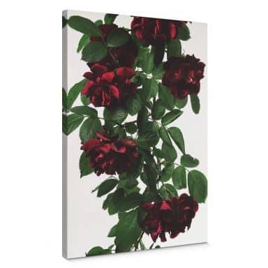Leinwandbild Kadam - Flora Rose