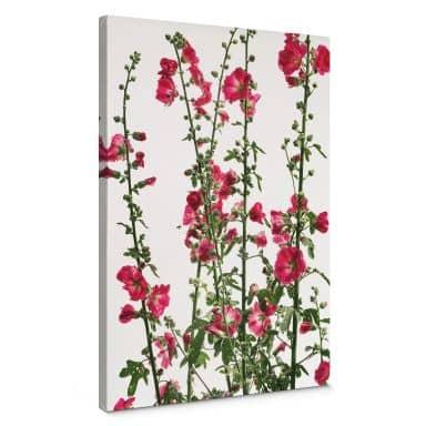Canvas Kadam - Flora Rose