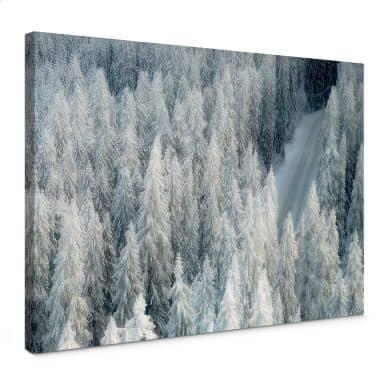 Canvas Kalliolahti - Whiter Winter