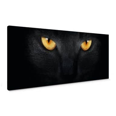 Cat\'s Eyes Canvas print