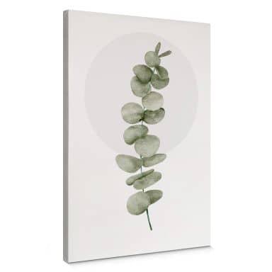 Leinwandbild Kubistika - Eukalyptus