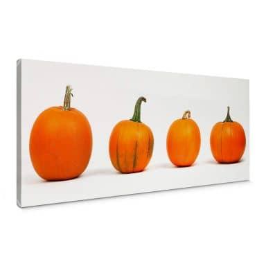 Pumpkins Canvas print panorama