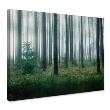 Leinwandbild Lindsten - Im Wald