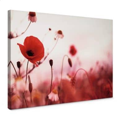 Poppy Impressions Canvas print
