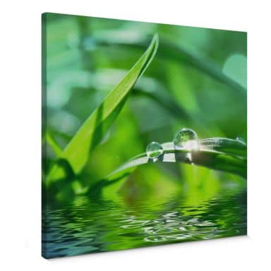 Nature 6 Canvas print