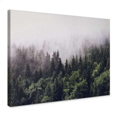 Canvas Print Foggy Forest