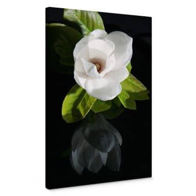 Leinwandbild Orchideengarten